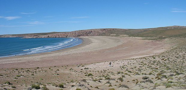 Bahia del oso marino Santa Cruz.jpg
