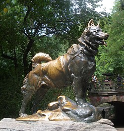 Balto statue Michelle Carr Crowe blog image