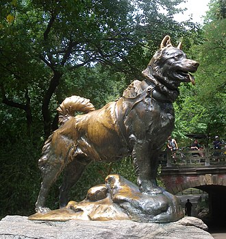1925 serum run to Nome - Statue of Balto, the lead dog on the last relay team. The statue is located in Central Park (NYC) and is dedicated to all the dogs involved in the serum run.
