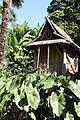 Bambouseraie de Prafrance 20150720 09.jpg