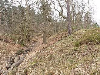 Devil's Highway (Roman Britain) - Bank and ditch at Caesar's Camp