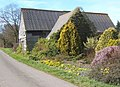 Barn with colourful early spring garden, Milden - geograph.org.uk - 724843.jpg