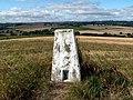 Barugh Hill Trig Pillar S4237 - geograph.org.uk - 542033.jpg
