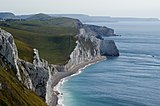 Bats Head from White Nothe-1.jpg