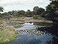 Below Beeleigh Falls - geograph.org.uk - 230821.jpg