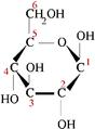 Beta-d-glucose.png