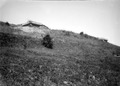 Betonierte Bunker am Hang - CH-BAR - 3241787.tif