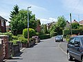 Birch Coppice, Quarry Bank - geograph.org.uk - 1363157.jpg