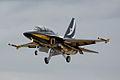 Black Eagles T-50.jpg