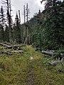 Black Hills National Forest - Social 5.jpg