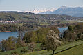 Blick von Beinwil am Hallwilersee Richtung Alpen.jpg