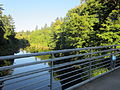 Blue Bridge at Reed College 2012.JPG