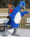 Blue The Blue Goose Of St Marks WithMonarchWings By Joody Moates.jpg