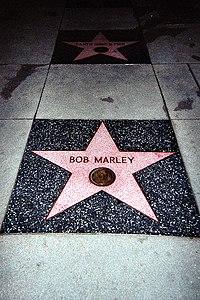 Bob Marley El  rey del Reggae