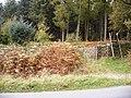 Bole Edge Plantation, stile - geograph.org.uk - 1012727.jpg