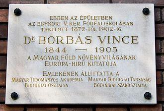 Vincze von Borbás - A plaque in commemoration of Borbás in Budapest.