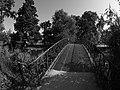 Bordeaux Jardin Public Vue n°5.jpg