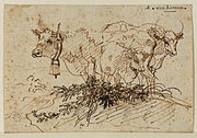 Borssom Study of group of cows.jpg