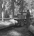 Bosbewerking, auto's, boomstammen, sleepwerkzaamheden, arbeiders, Tractors, Bestanddeelnr 253-5108.jpg