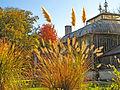 Botanička bašta Jevremovac, Beograd - jesenje boje, svetlost i senke 34.jpg
