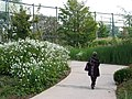 Branly 18026 Quai-Branly-jardin-nord-47.jpg