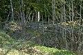 Bredforsen - KMB - 16001000000838.jpg