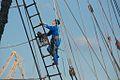 Brest2012-Philweb 10.jpg