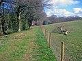 Bridleway to Bredenbury - geograph.org.uk - 1516720.jpg