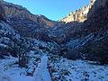 Bright Angel Trail above Indian Garden.JPG