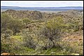 Broken Hill Living Desert 1 (21725372041).jpg