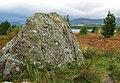 Bruce's Stone, Moss Raploch - geograph.org.uk - 1574926.jpg
