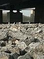 Brug Muiden - panoramio (4).jpg