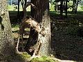 Bucha park18.JPG