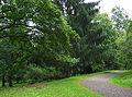 Buddenberg-Arboretum 2004.jpg