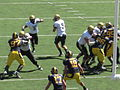 Buffaloes on offense at Colorado at Cal 2010-09-11 50.JPG