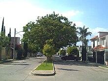 Zona metropolitana de San Francisco del Rincón - Wikipedia 75daa0b29b2
