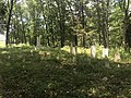 Bullard-Barger Cemetery on June 16th 2018.jpg