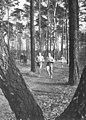 Bundesarchiv Bild 183-71836-0002, Hafenstein, Jahnke.jpg