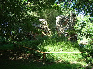 Grubenhagen Castle (Vollrathsruhe) - Image: Burg Grubenhagen Mauerreste 1