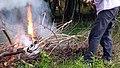 Burning Hillsborough NC 171247 (37488392166).jpg