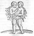 C. Lycosthenes, Prodigiorum ac ostentorum chronicon. Wellcome L0030206.jpg