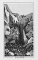 CH-NB-Souvenir de l'Oberland bernois-nbdig-18220-page021.tif