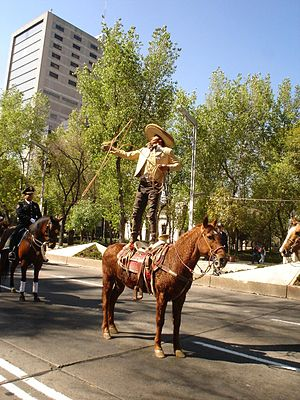 "Charreada - A Charro making a risky ""suerte"" (Luck)."