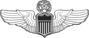U.S. Air Force aeronautical rating - USAF Command Pilot wings