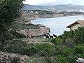 Cabras endémicas Cala Figuera Mallorca.jpg