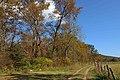 Cades Cove, October 20, 2020 -- Warren Bielenberg (3) (50516796017).jpg