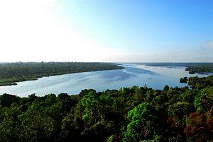 Riau - Giam Siak Kecil - Bukit Batu biosphere reserves