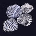 Calymenidae - Calymene niagarensis.JPG