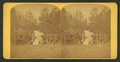 Camp Joy, Colorado Springs, from Robert N. Dennis collection of stereoscopic views.png