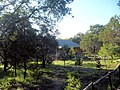 Campamento ecológico los alamitos - panoramio.jpg
